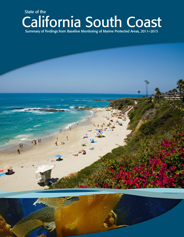Cover of the South Coast State of the Region Report