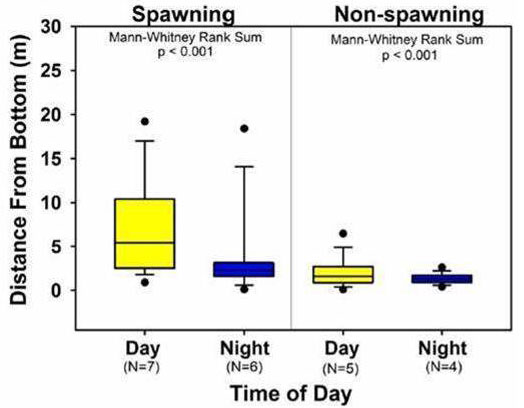 Box and whisker plots showing distance from bottom during day and night periods for both spawning and non-spawning fish.