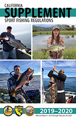 sport fishing regulation supplement booklet cover - link opens in new window